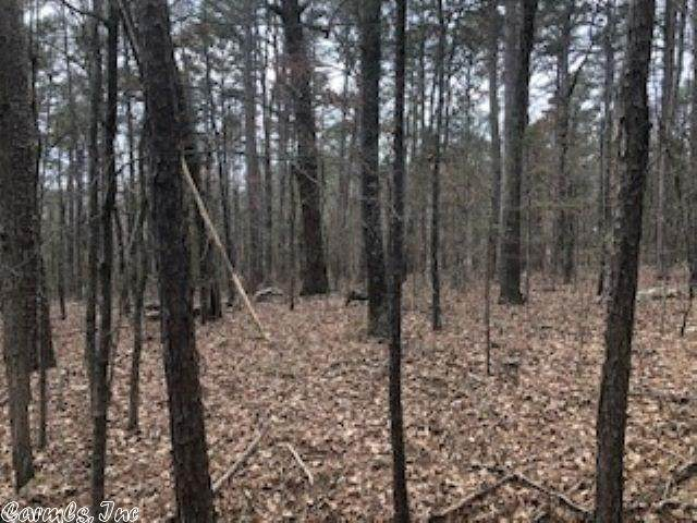 2 Woodland Shores, Clinton, AR 72031 (MLS #20007596) :: United Country Real Estate