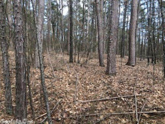 10 Woodland Shores, Clinton, AR 72031 (MLS #20007615) :: United Country Real Estate