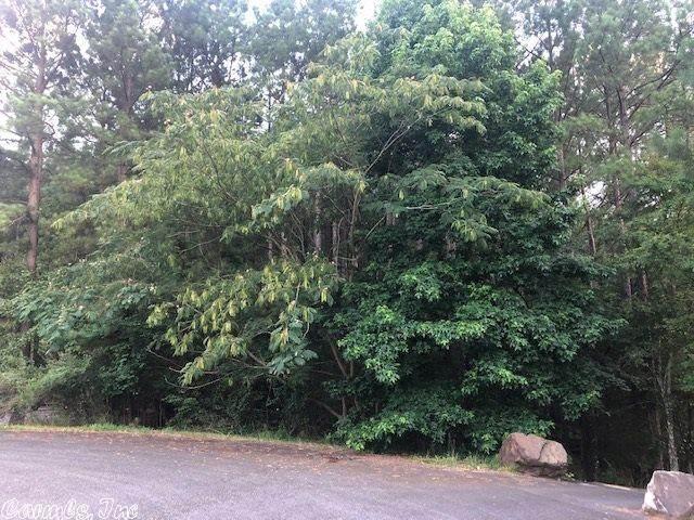 23 Nubarron Lane, Hot Springs Village, AR 71909 (MLS #20021340) :: United Country Real Estate