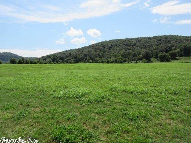 295 River Valley, Mountain View, AR 72560 (MLS #20021448) :: United Country Real Estate