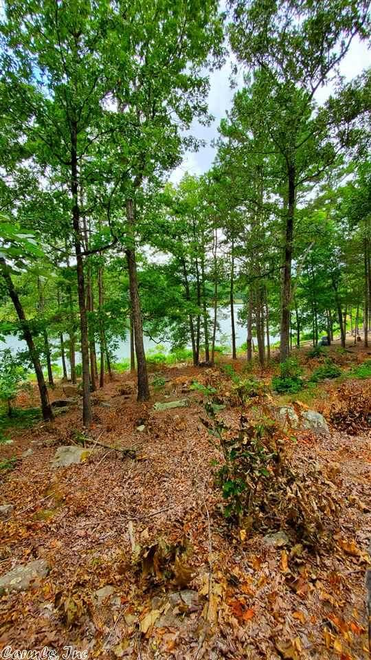 0 Brittany Cove Lot 10, Greers Ferry, AR 72067 (MLS #20023889) :: United Country Real Estate