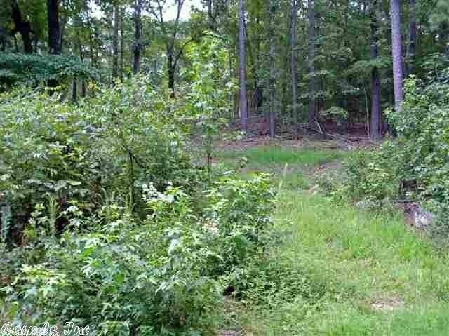 13 Rockwood, Tumbling Shoals, AR 72581 (MLS #20025701) :: United Country Real Estate