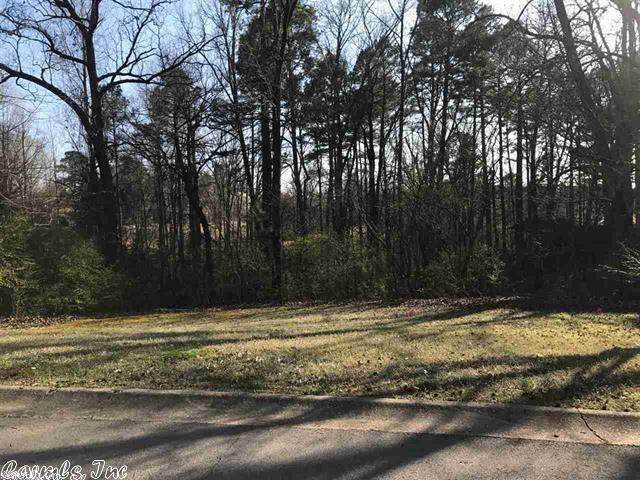 14 Miller Cove, Benton, AR 72019 (MLS #20030646) :: United Country Real Estate