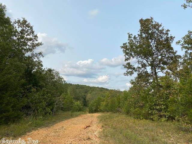 22 Mcfadden Addn Bluff, Hardy, AR 72542 (MLS #20031341) :: United Country Real Estate