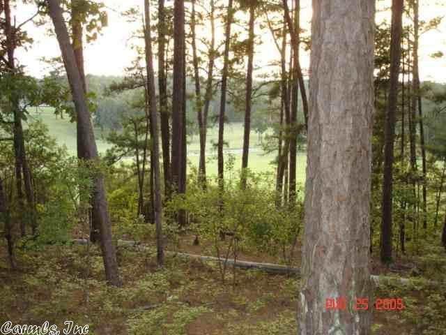 2 Dominar, Hot Springs Village, AR 71909 (MLS #20035837) :: United Country Real Estate