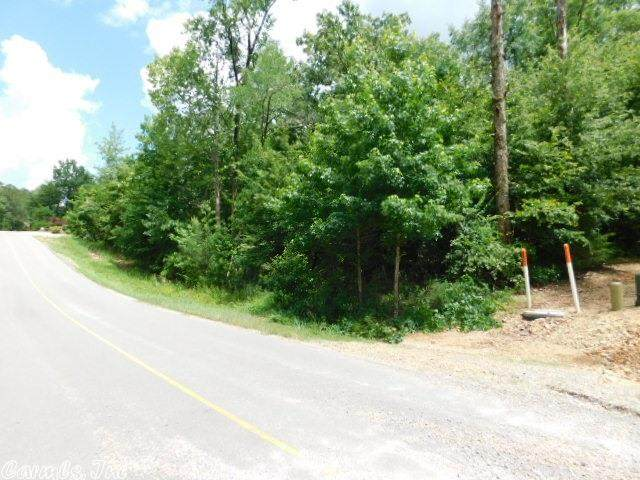 213 Elcano Drive, Hot Springs Village, AR 71909 (MLS #20037860) :: United Country Real Estate