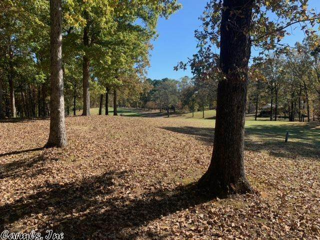 1554 Stonebriar Drive, Hot Springs, AR 71913 (MLS #21001860) :: United Country Real Estate