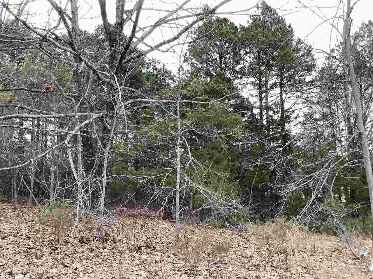 92 Cedar View Loop - Photo 1