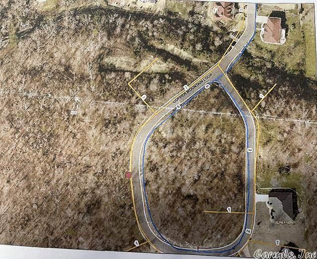 33 Copper Mountain Loop, Hot Springs, AR 71913 (MLS #21009898) :: The Angel Group