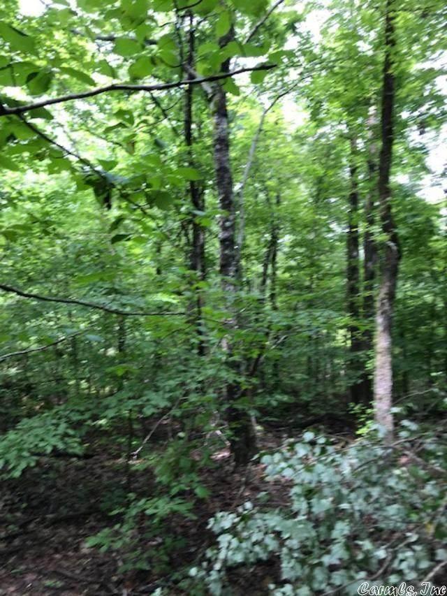 Woodland Addition, Mena, AR 71953 (MLS #21012591) :: The Angel Group