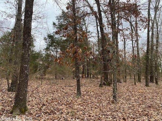 2912 Crescent, Horseshoe Bend, AR 72512 (MLS #21013490) :: United Country Real Estate