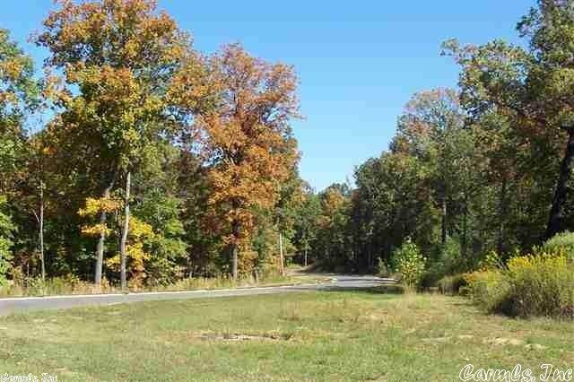 21 Marywood Subdivision Phase II, Ward, AR 72176 (MLS #21028688) :: United Country Real Estate