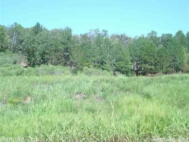 111 Turtle Creek, Maumelle, AR 72113 (MLS #21030426) :: Liveco Real Estate