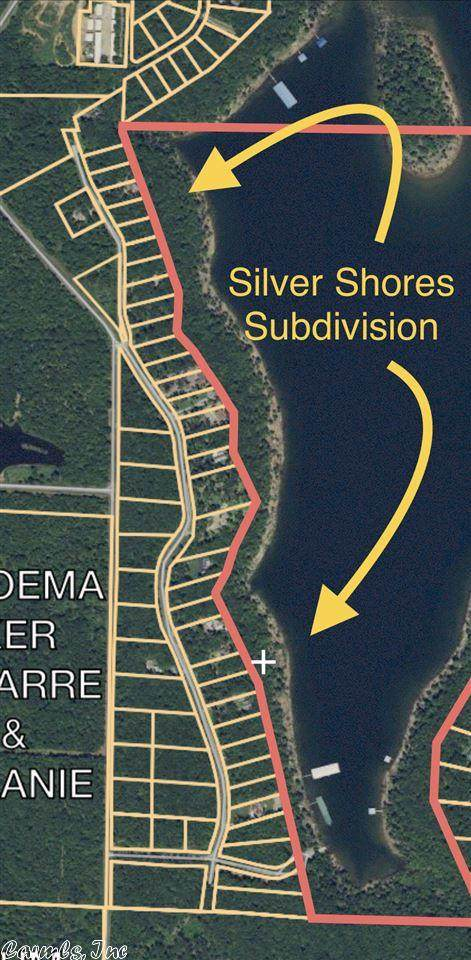 6 Silver Shores Ln., Drasco, AR 72530 (MLS #18029303) :: United Country Real Estate