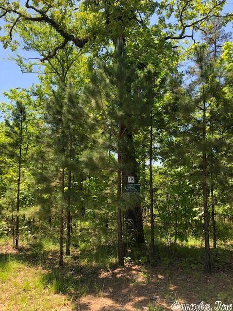 232 Dellmere Drive, Hot Springs, AR 71913 (MLS #20000453) :: The Angel Group