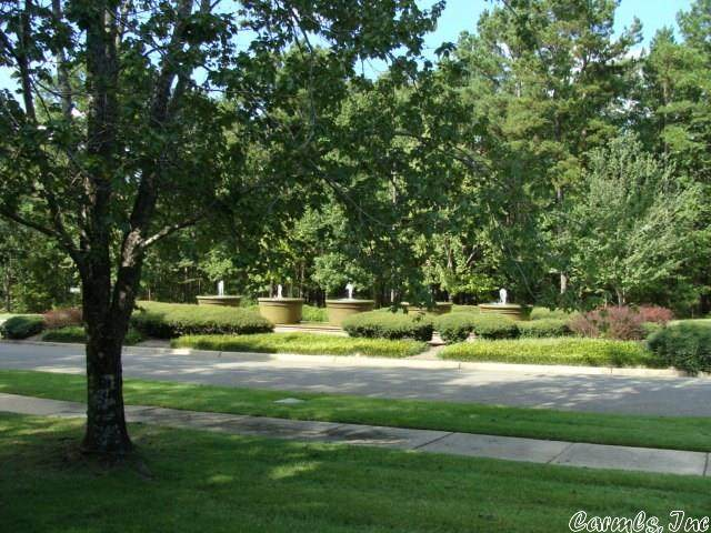 156 Dellmere Drive, Hot Springs, AR 71913 (MLS #20000644) :: The Angel Group