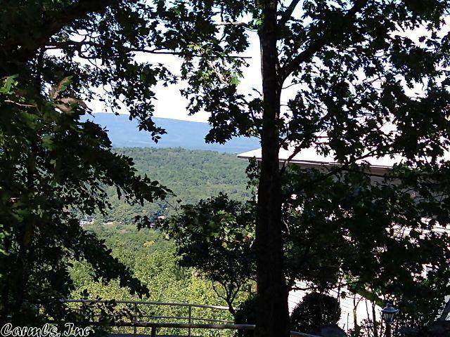 124 E Villena Drive, Hot Springs Village, AR 71909 (MLS #21001293) :: The Angel Group