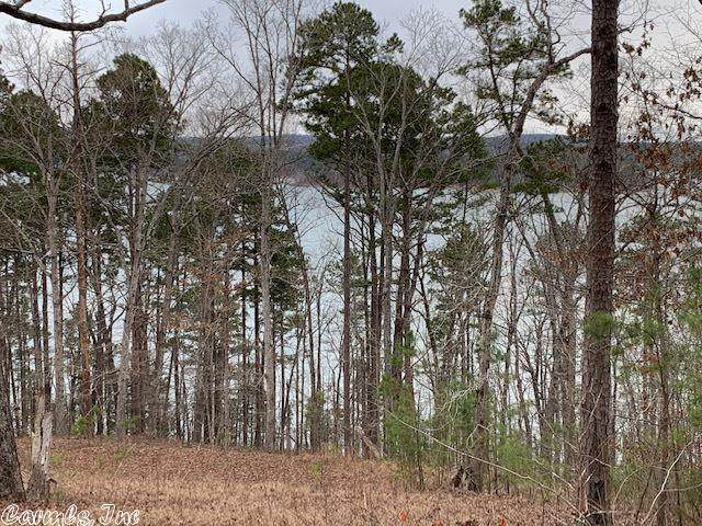 1441 Waterfront, Bee Branch, AR 72013 (MLS #21003018) :: The Angel Group