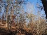 Tr 5 Mountain Drive - Photo 4
