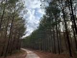 188 acres Promise Road - Photo 1