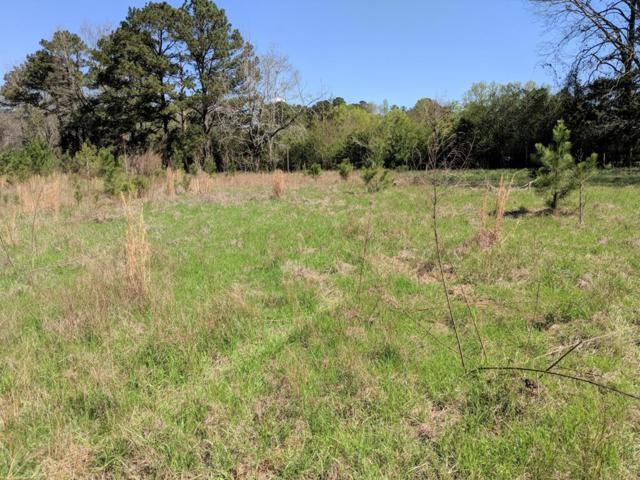 Lot 22 County Line Road, MIDLAND, GA 31820 (MLS #164743) :: The Brady Blackmon Team