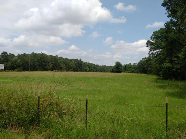 0 Beaver Run Road, MIDLAND, GA 31820 (MLS #166847) :: Matt Sleadd REALTOR®