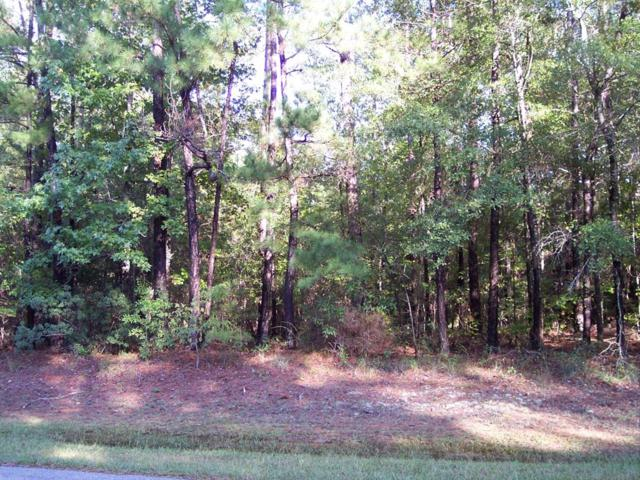 LOT 15 A Acorn Court, CATAULA, GA 31804 (MLS #167185) :: The Brady Blackmon Team