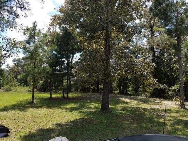 365 Henry Currington Road, MAUK, GA 31058 (MLS #168398) :: The Brady Blackmon Team