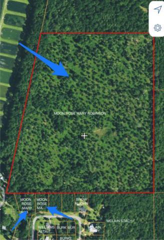 0 Arrowhead Estates Drive, WARM SPRINGS, GA 31830 (MLS #169672) :: Matt Sleadd REALTOR®