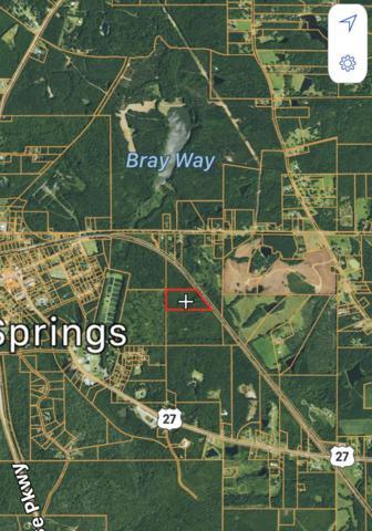 0 Roosevelt Highway, WARM SPRINGS, GA 31830 (MLS #169902) :: Matt Sleadd REALTOR®