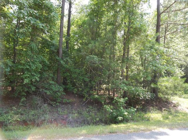 LOT 1 Savior Lane, HAMILTON, GA 31811 (MLS #170514) :: Matt Sleadd REALTOR®