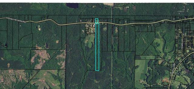 5731 Scenic Heights Road, MANCHESTER, GA 31816 (MLS #170947) :: The Brady Blackmon Team