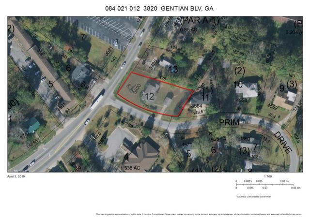 3820 Gentian Boulevard, COLUMBUS, GA 31907 (MLS #171895) :: The Brady Blackmon Team