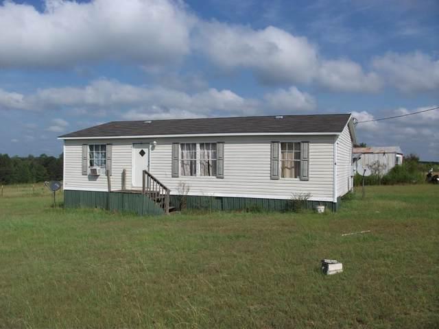1121 Jimmy Wells Road, ELLAVILLE, GA 31806 (MLS #176178) :: The Brady Blackmon Team