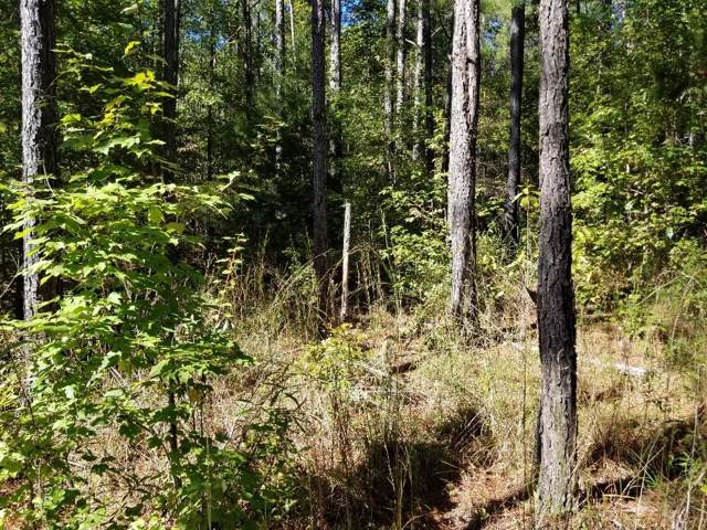Lot 19 Lee Road 2121, SALEM, AL 36874 (MLS #176827) :: The Brady Blackmon Team