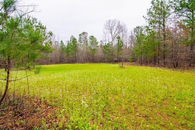0 Alabama Road, WAVERLY HALL, GA 31831 (MLS #177923) :: The Brady Blackmon Team