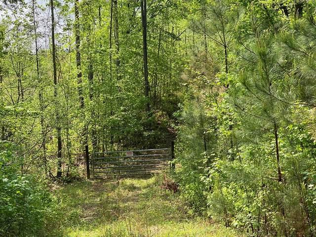 0 Brown Creek Road, SHILOH, GA 31826 (MLS #178406) :: Kim Mixon Real Estate
