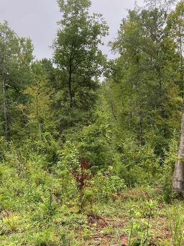 0 Lake Talbot Road, BOX SPRINGS, GA 31801 (MLS #181039) :: Kim Mixon Real Estate