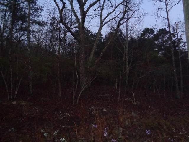 Lot 7 Mountain Top Way, PINE MOUNTAIN, GA 31830 (MLS #181141) :: Kim Mixon Real Estate