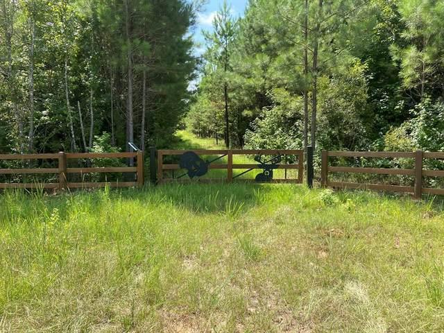 0 Fortune Hole Road, HAMILTON, GA 31811 (MLS #181268) :: Kim Mixon Real Estate