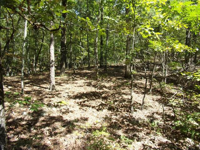 Lot 16, Blk 26 Honeysuckle Circle, WAVERLY HALL, GA 31831 (MLS #181312) :: Haley Adams Team