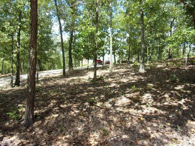 Lot 10, Blk 31 Juniper Way, WAVERLY HALL, GA 31831 (MLS #181315) :: Haley Adams Team