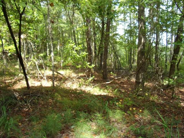 Lot 9, Blk 76 Oak Mountain Estates, WAVERLY HALL, GA 31831 (MLS #181316) :: Haley Adams Team