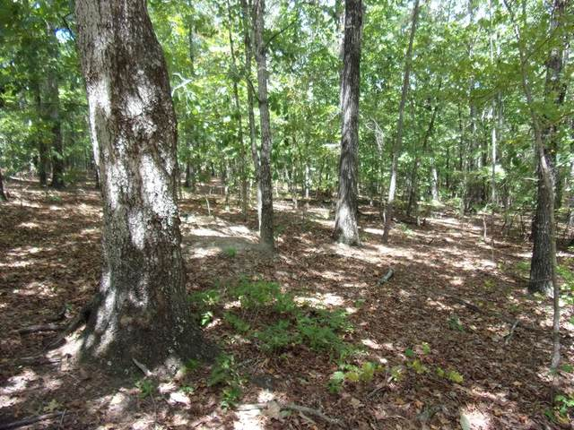 Lot 16, Blk 24 Juniper Trail, WAVERLY HALL, GA 31831 (MLS #181422) :: Haley Adams Team