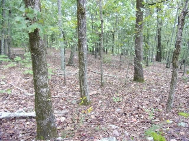 Lot 7 & 8 Juniper Trail, WAVERLY HALL, GA 31831 (MLS #181614) :: Haley Adams Team