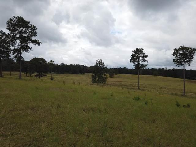 154 Red Oak Drive, BOX SPRINGS, GA 31801 (MLS #181778) :: Haley Adams Team