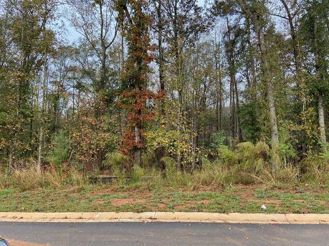 L0t 14 County Line Road, MIDLAND, GA 31820 (MLS #182248) :: Kim Mixon Real Estate