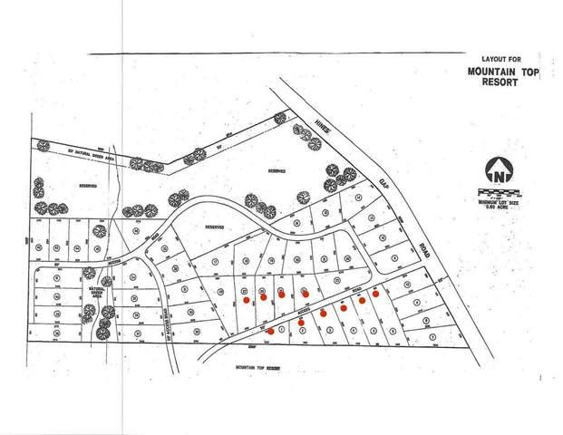 0 Mountain Springs, WARM SPRINGS, GA 31830 (MLS #182709) :: Kim Mixon Real Estate