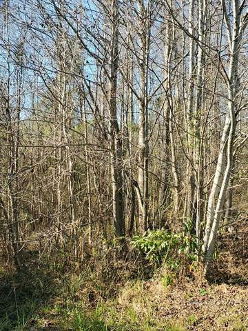 0 Ponderosa Drive, PHENIX CITY, AL 36869 (MLS #182967) :: Kim Mixon Real Estate