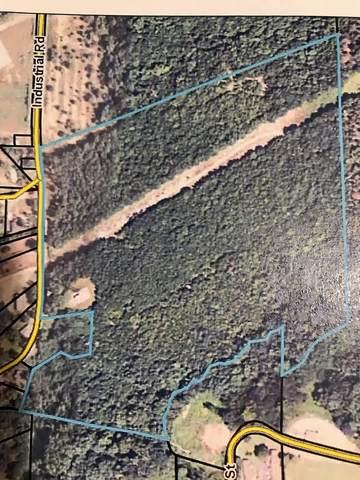 0 Industrial Road, BUENA VISTA, GA 31803 (MLS #183035) :: Kim Mixon Real Estate